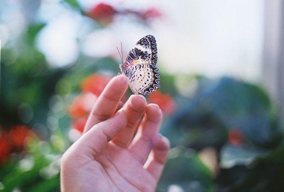 Sobre perdão pelo passado e gratidão pelo presente.
